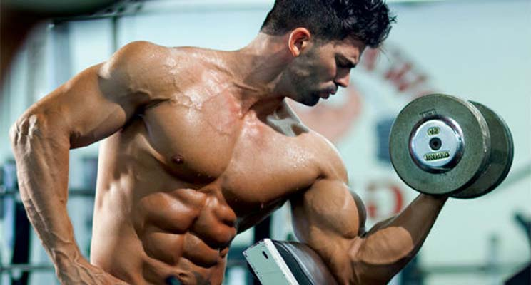 Dumbbell Biceps Workouts